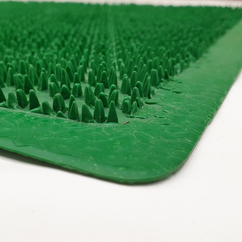 GRAFFE พรมดักฝุ่นกันลื่นขนาด40*60ซม.หนา1มม. PGM9100GN สีเขียว