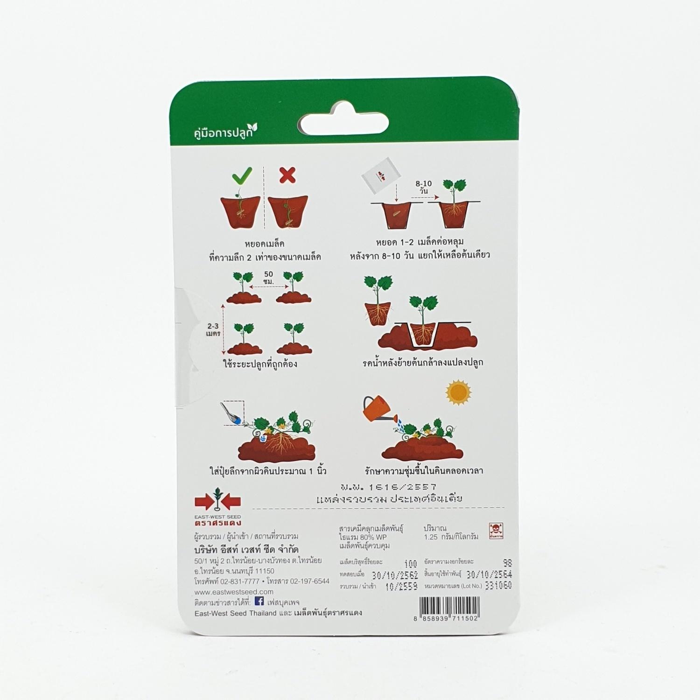 ศรแดง แตงโมลูกผสม จอมขวัญ F1 - สีขาว
