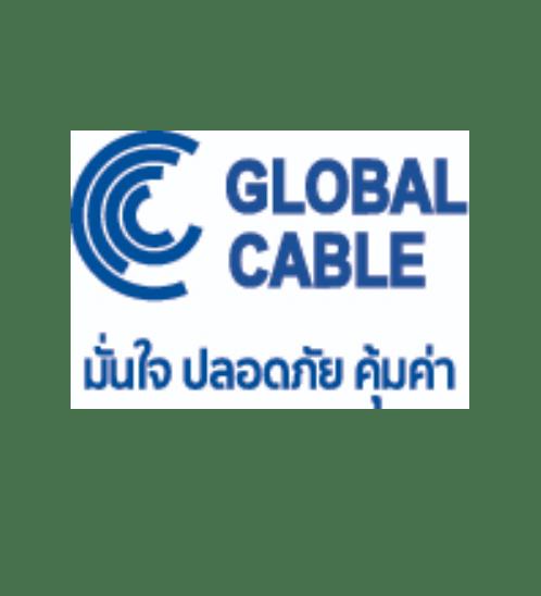 Global Cable  สายไฟ THW  IEC01 1x2.5 100เมตร สีขาว