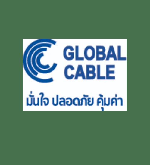 Global Cable สายไฟ VAF 2x4 SQ.MM 100M  สีขาว