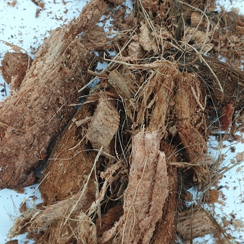 GIANT กาบมะพร้าวสับละเอียด วัสดุเพาะปลูกGIANT สีน้ำตาล
