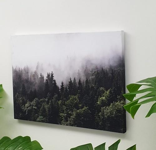 NICE รูปภาพพิมพ์ผ้าใบ View-Forest ขนาด 70x50 ซม. (ก.xส.)(ป่าไม้) C7050-16