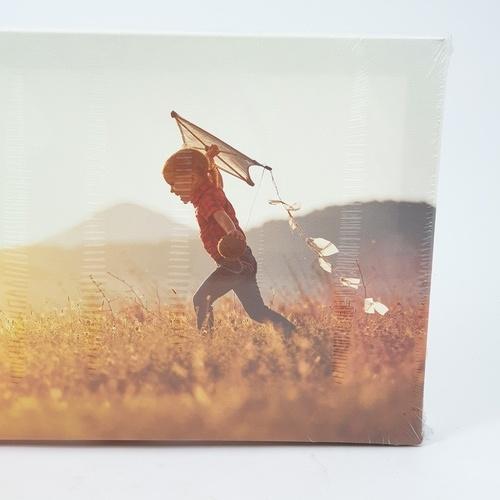 NICE รูปภาพพิมพ์ผ้าใบ Kid ขนาด 30x20ซม. (ก.xส.) (เด็กวิ่งเล่นว่าว) C3020-1