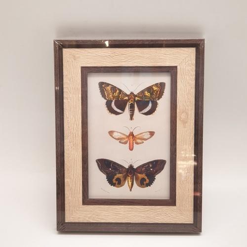 COZY กรอบรูป ขนาด 4x6นิ้ว  ลายไม้ สี Wood with dark edge