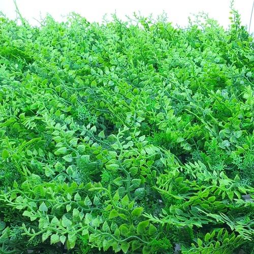 Tree O ต้นไม้เทียมติดผนัง ขนาด 50×50×3 ซม. MZ188009A สีเขียว