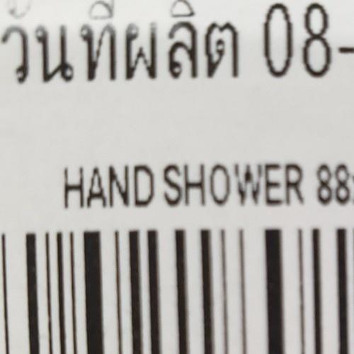 WS ฝักบัวอาบน้ำพลาสติกสีขาว  WS-8130PW