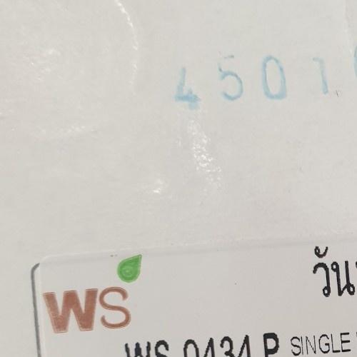 WS ก๊อกเดี่ยวอ่างซิงค์ WS-0434 P