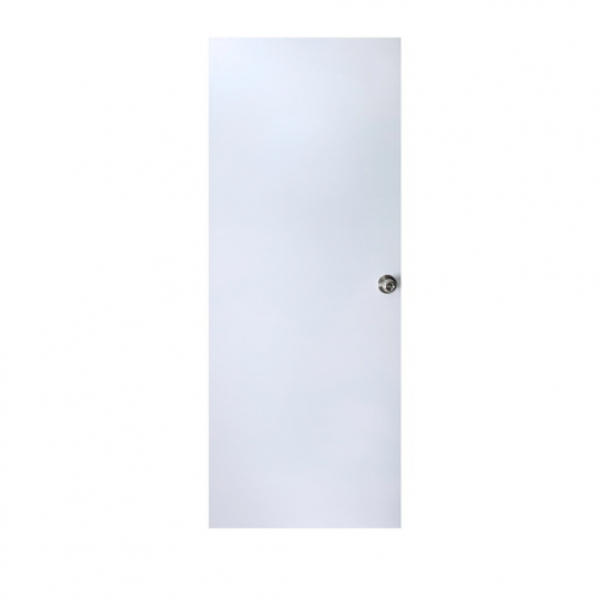 PROFESSIONAL DOOR บานประตูเหล็กขนาด 0.90*2.00 ม. D2W สีขาว