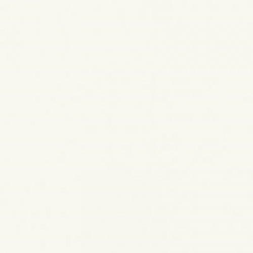 Cotto 60x60 โพล่า-ขาว (นาโน) (4P) A.