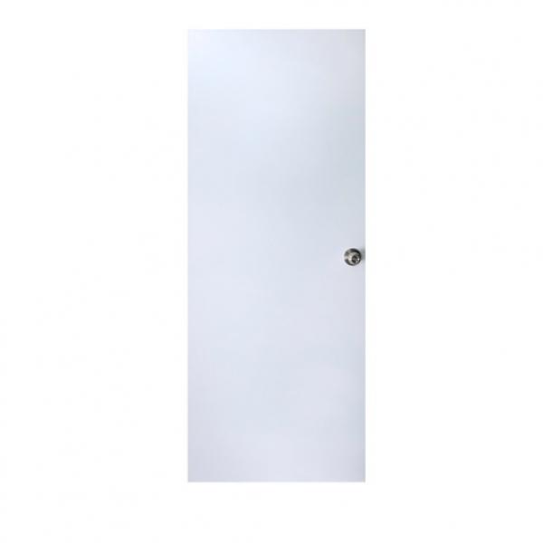 PROFESSIONAL DOOR ประตูเหล็ก ขนาด 90x200 ซม.  เจาะ D2W ขาว