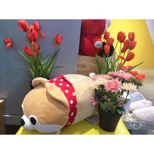 USUPSO  ตู๊กตา Akita  14 inch สีชมพู