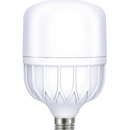 LEKISE หลอดไฟ LED T-Bulb DL 40W T100 CAPELLA  ขาว
