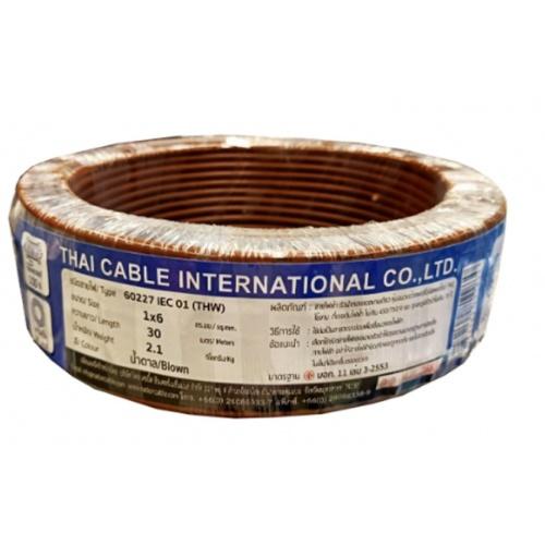 Global Cable  สายไฟ THW  IEC01 1x6 30เมตร  สีน้ำตาล