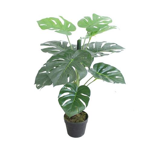 Tree O ต้นมอนสเตร่าประดิษฐ์ สูง75ซม. 12LVS พร้อมกระถาง JWS3071 สีเขียว
