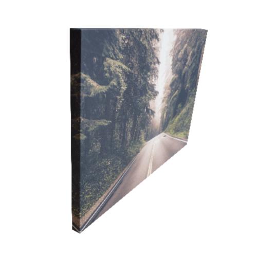 NICE รูปภาพพิมพ์ผ้าใบ View-Forest ขนาด  70x50 ซม. (ก.xส.) (ถนนและป่าข้างทาง) C7050-15