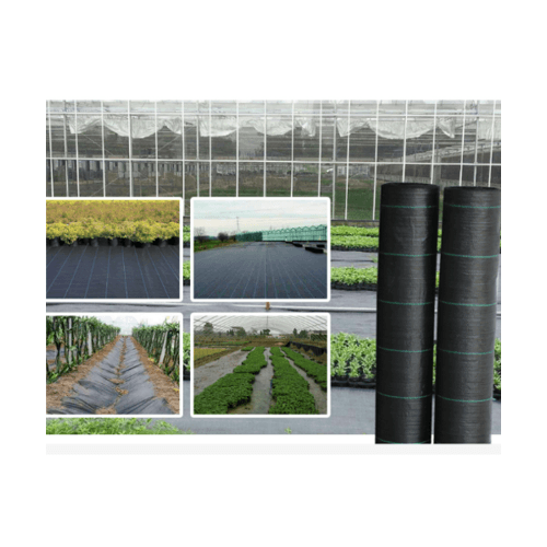 POLLO ผ้าพลาสติกคลุมวัชพืช รุ่น LYWY009 ขนาด 2x50M สีดำ LYWY009 สีขาว