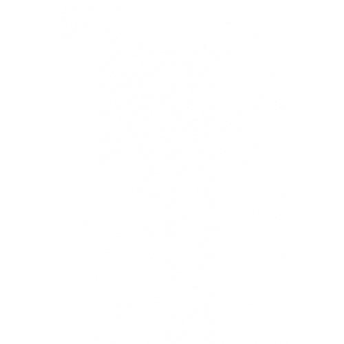 8X16 กลอส ไวท์ PM (12P) A.COTTO  ขาว