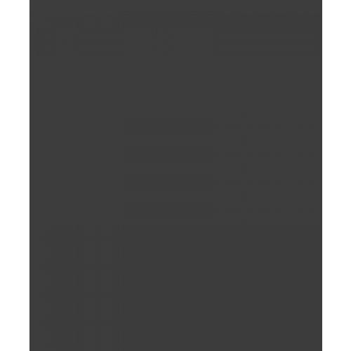 60x60 แบล็ค แมท BL66301M(4P) A.WDC  ดำ