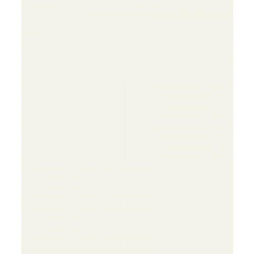 60x60 IVORY-WHITE MATT (BM6000M) A.WDC  ขาว