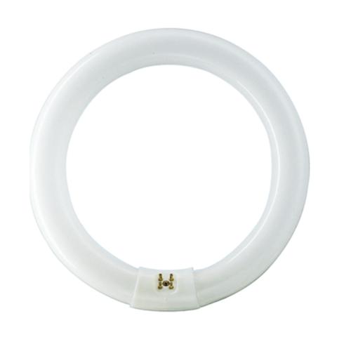 PHILIPS นีออนกลม TLE 32W #840 คูลไวท์ สีขาว