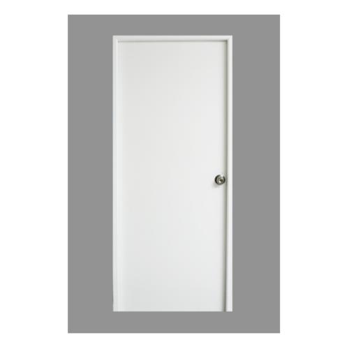 PROFESSIONAL DOOR ประตูเหล็ก ขนาด 70cm.x200cm.   D70W สีขาว