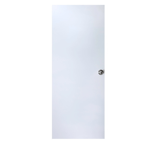 PROFESSIONAL DOOR บานประตูเหล็กขนาด 90*200 cm. D2G สีเทา