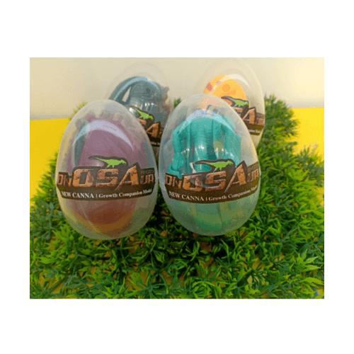 Sanook&Toys  ชุดไข่ไดโนเสาร์ Metamorphosed  X3001