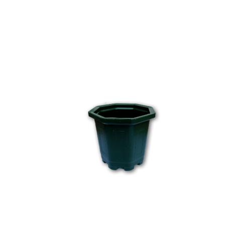 GREENHOUSE กระถางแคคตัส 3 นิ้ว สีเขียว หนาพิเศษ