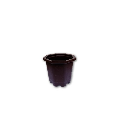 GREENHOUSE กระถางแคคตัส 3 นิ้ว สีน้ำตาล หนาพิเศษ
