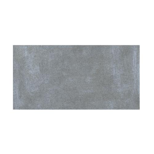 CAMPANA 30x60 ปลาสเตอร์-เทาเข้ม DN (6P) A.คัมพานา WT300x600