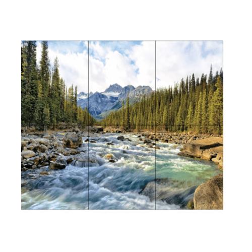 ARTE ภาพชุด 8x10 ป่าสน  A.  ป่าสน 3P/6P