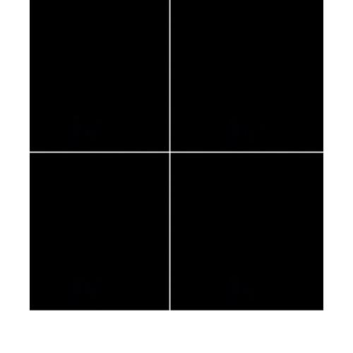 Marbella กระเบื้องแกรนิโต้ ขนาด 60x60 cm. W6Q302A Superblack (4P) A. สีดำ
