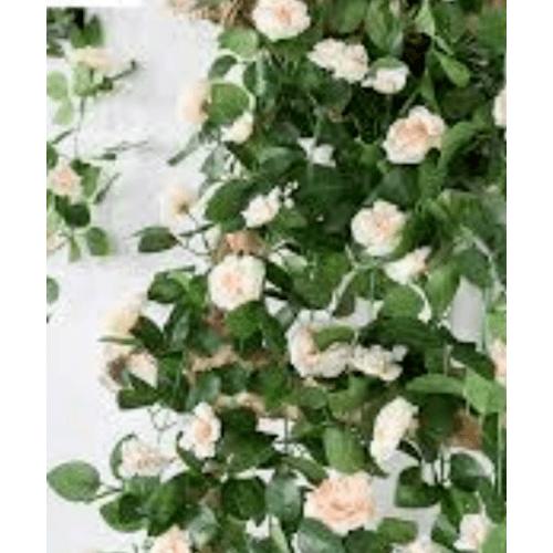 Tree O ดอกไม้ประดิษฐ์ตกแต่ง HYL-53 HYL-53