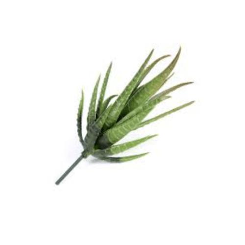 Tree O ต้นไม้ประดิษฐ์ตกแต่ง XCJ011 สีเขียว