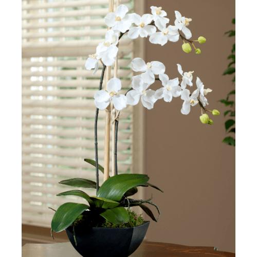 Tree O ดอกไม้ประดิษฐ์ตกแต่ง HB003 สีขาว